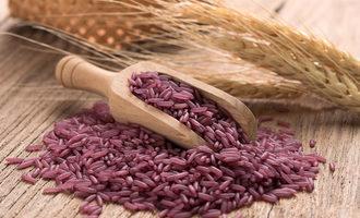 Purplerice_lead