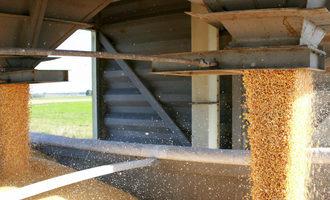 Cornmilling_lead