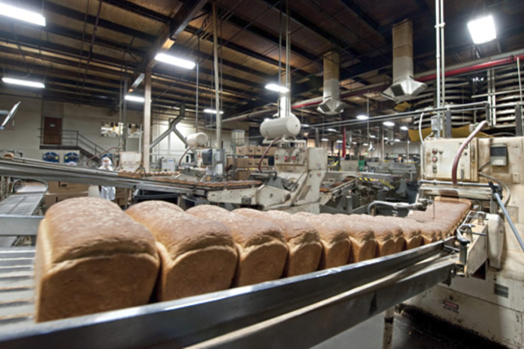 Aunt Millie's bread production line