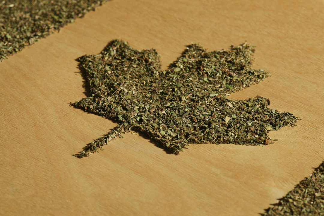 Cannabis in shape of Canadian flag