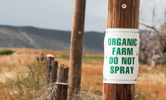 Organicfarmsign_lead