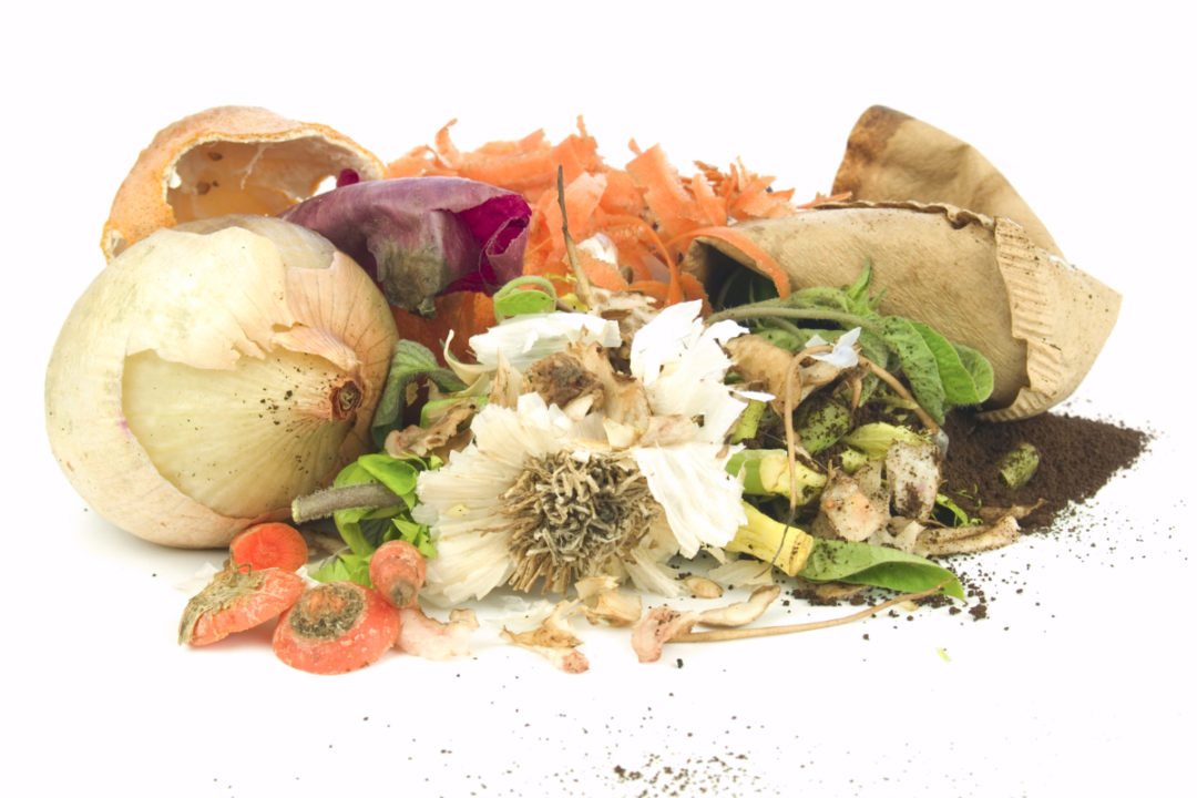 Food waste for composting