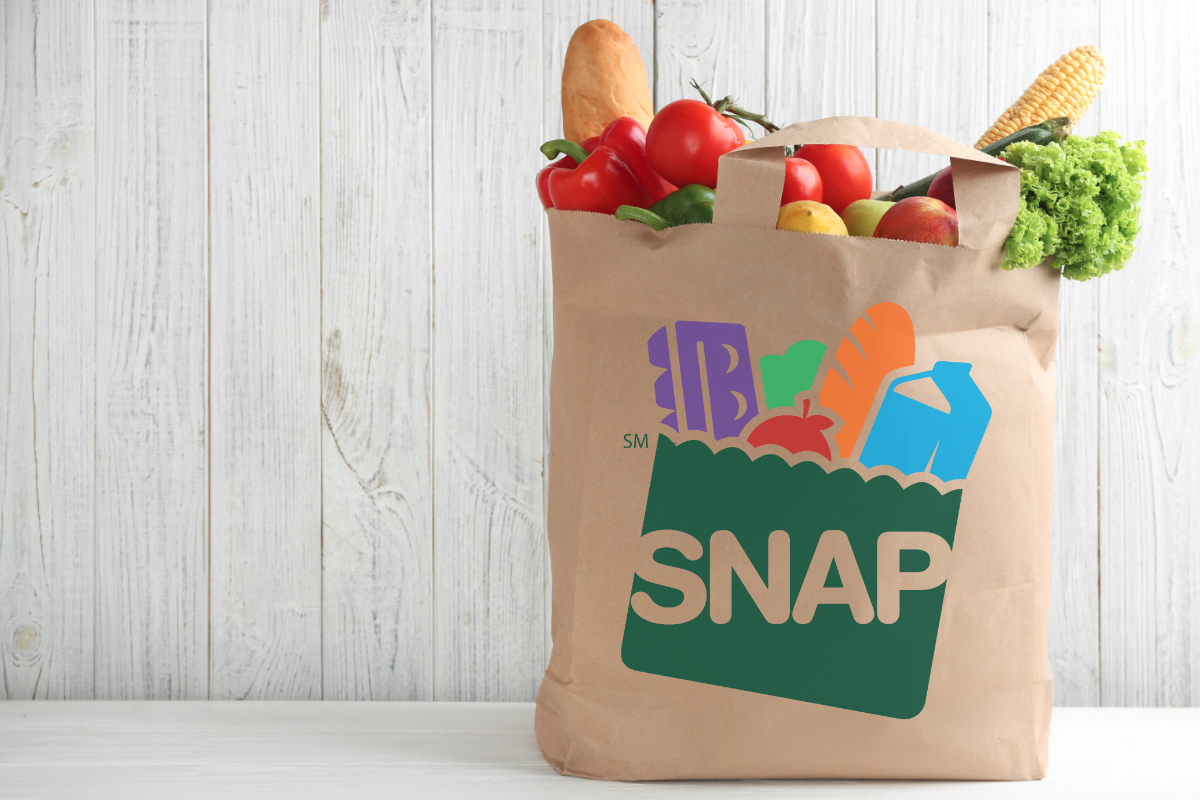 SNAP bag of groceries