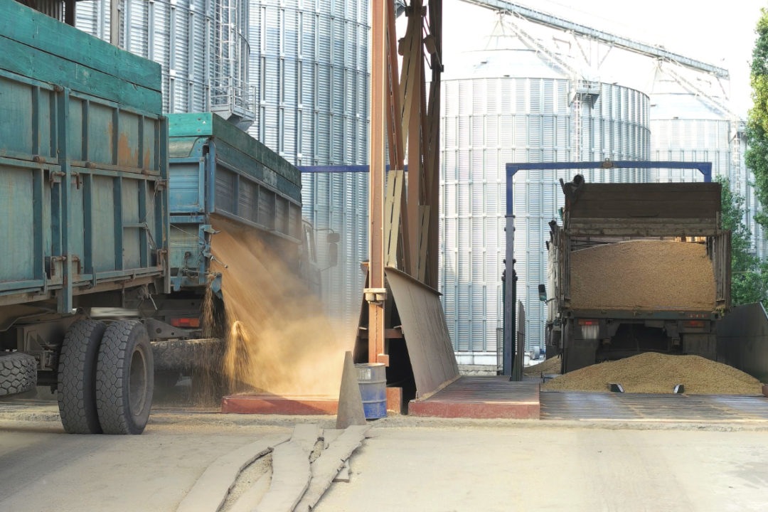 Grain truck transport