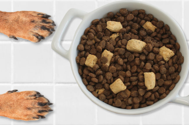 Freeze dried pet food