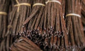 Vanillabundled_lead