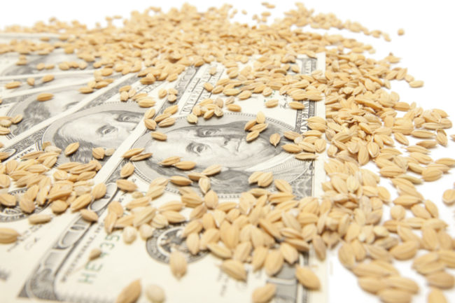 Wheat and money