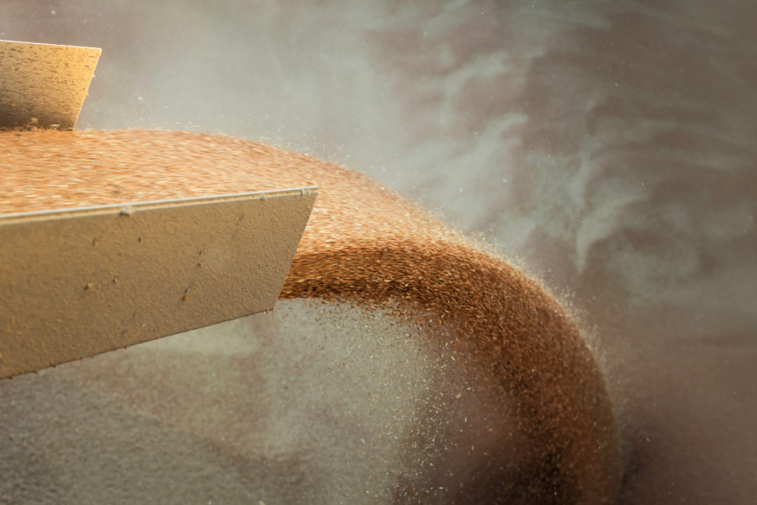 Pouring wheat