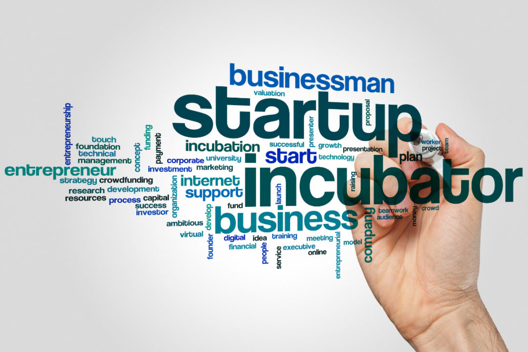 Business startup accelerator word cloud