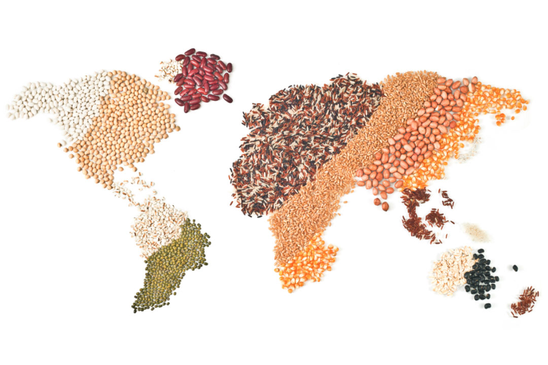 World map made out of grains