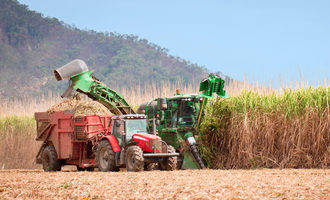 Sugarcaneharvest_lead
