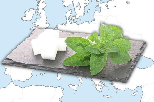Stevia in Europe