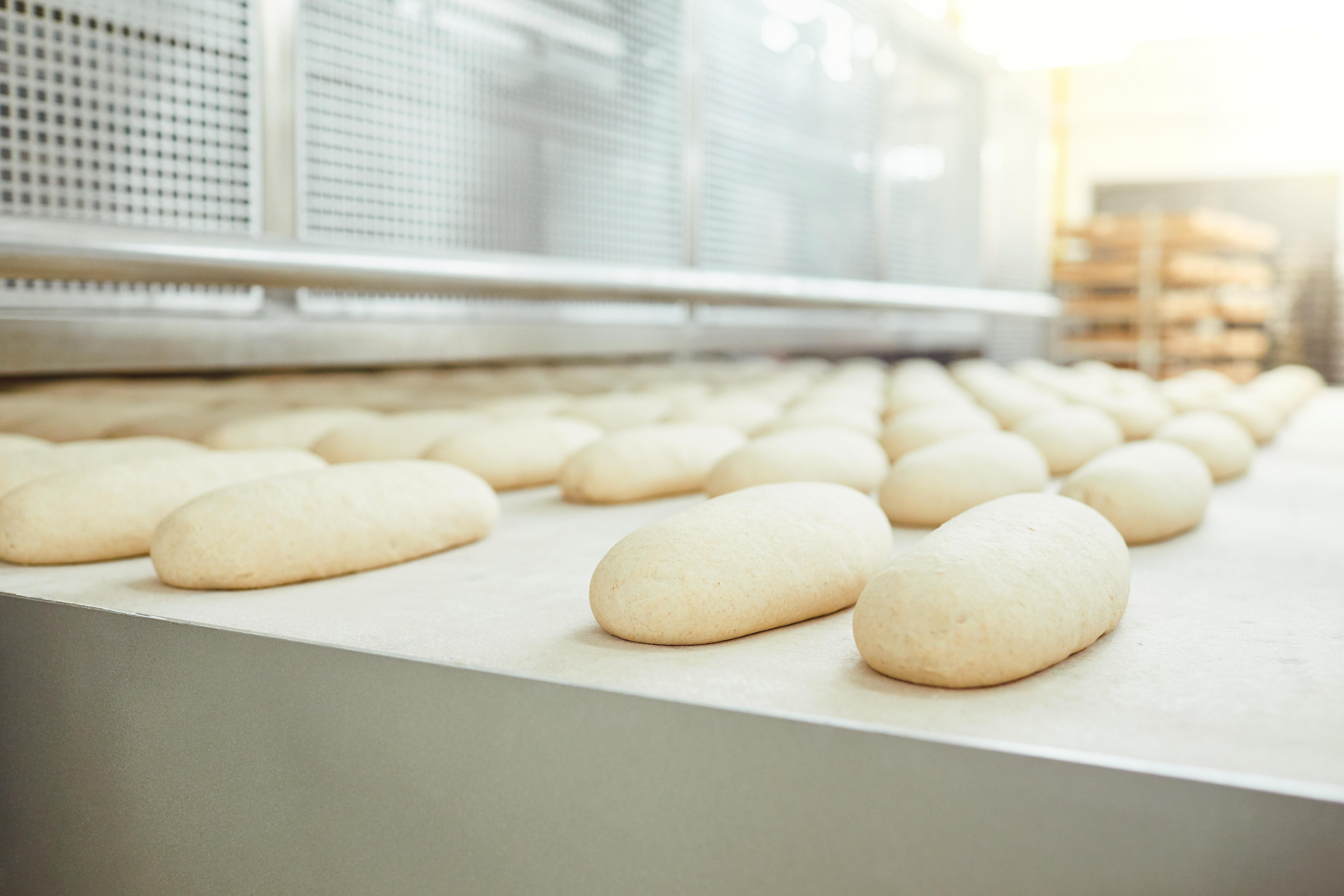 Bakery Census