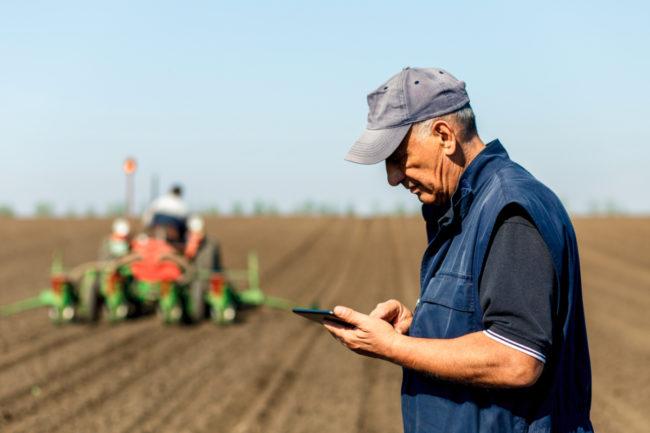 Concerned farmer using tablet