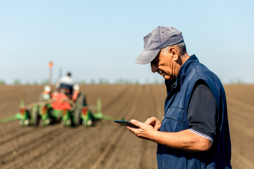 Concerned farmer using tablet