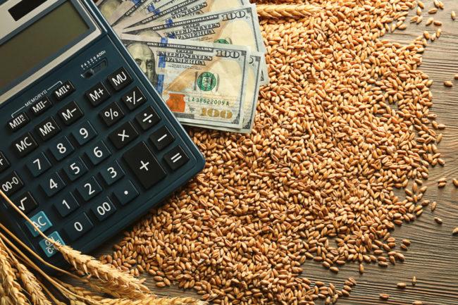 Wheat, money and calculator