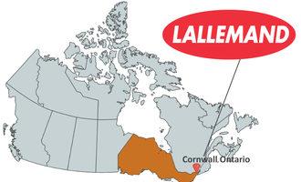 Lallemandcornwallont_lead
