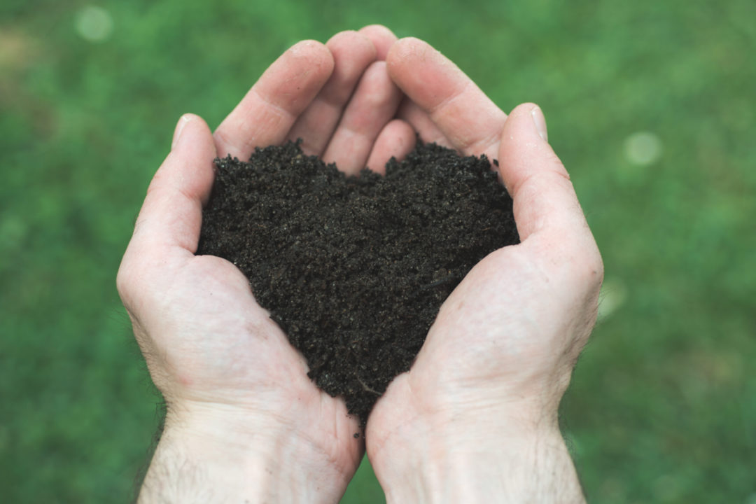 Hands holding soil in the shape of a heart