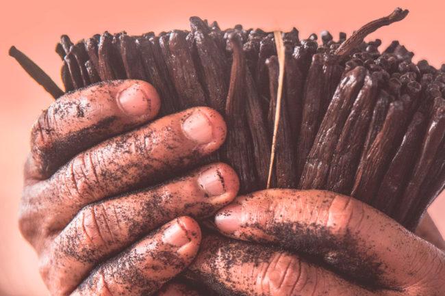 Kerry Group sustainably harvested vanilla