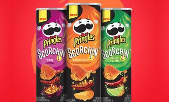 Pringlesscorchin lead