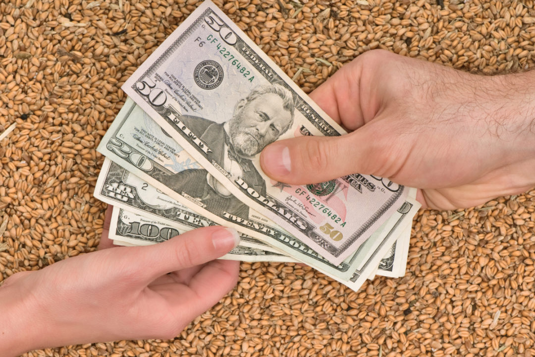 Whole grains and money