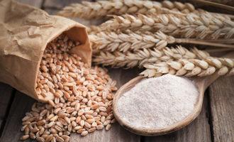Wheat flour photo cred adobe stock e1