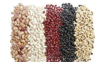Beans_photo-adobe-stock_e