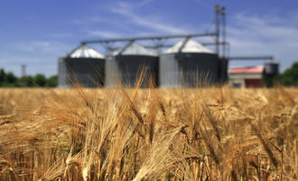 Wheat-field-with-silos_adobestock_54246480_e