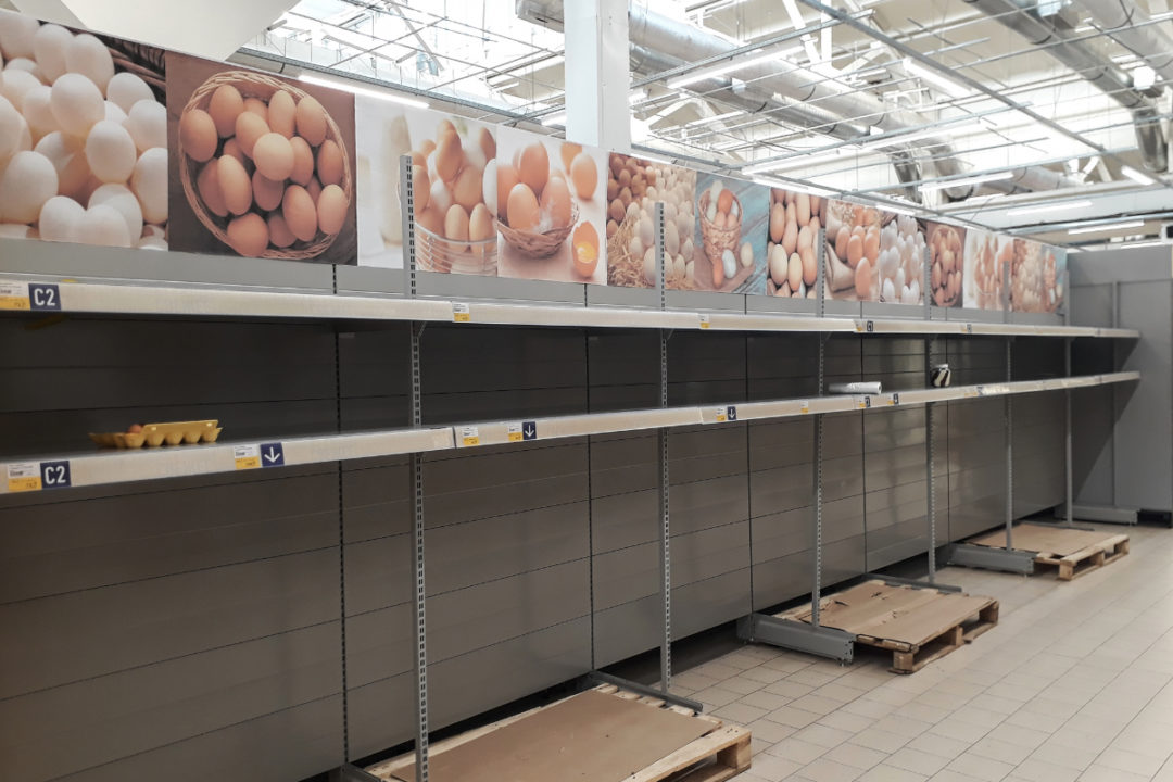Empty egg shelves at the supermarket