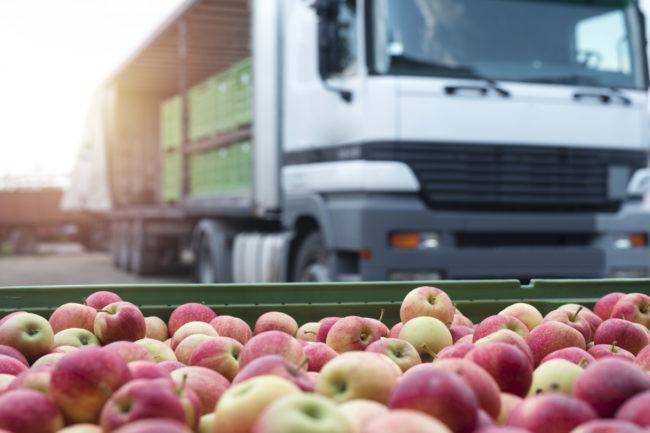 Food distribution apple truck