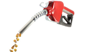 Fuelfromcorn_lead
