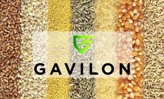 Gavilon-logo_e