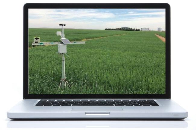 Virtual wheat tour in Colroado