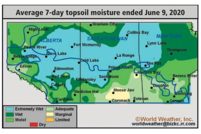 Average 7-day topsoil moisture ended June 9, 2020 graphic