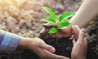Sustainabilityconcept lead