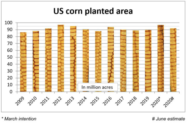 US corn planted area chart