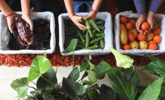 Unileversustainablefarming lead