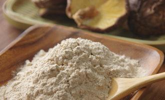 Mushroompowder lead