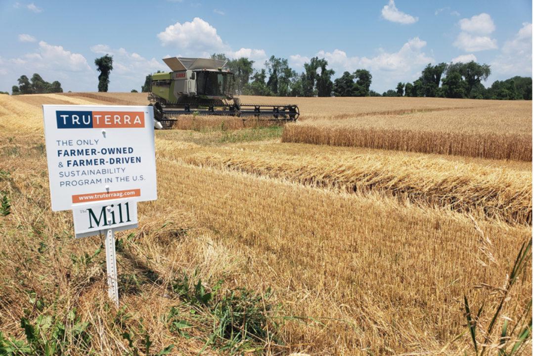 TruTerra sustaunable wheat