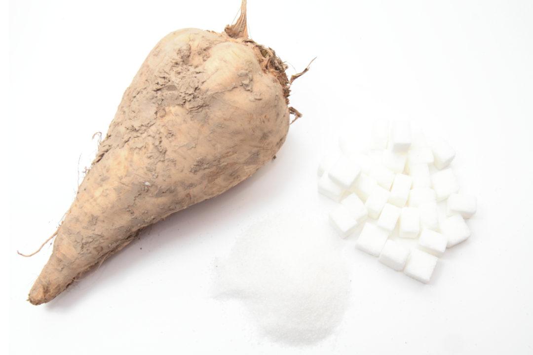 Sugar beet and sugar