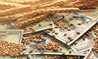 Wheatmoney photo cred adobestock e