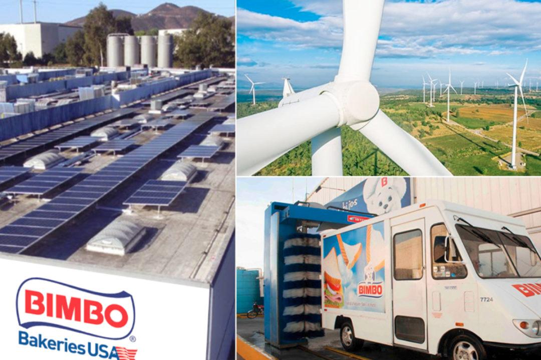 Bimbo sustainability