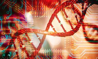Bioinformatics lead