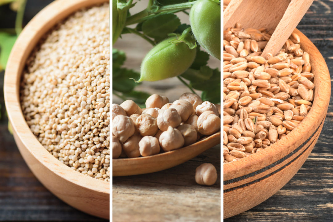 Quinoa, chickpeas and wheat