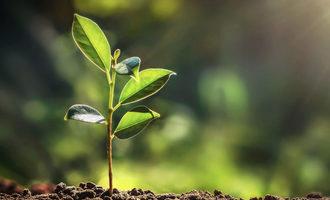 Sustainableag lead