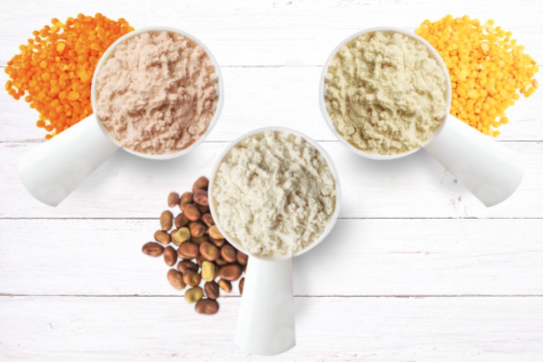 Australian Plant Proteins Faba Bean Isolate Powder, Yellow Lentil Isolate Powder and Red Lentil Isolate Powder