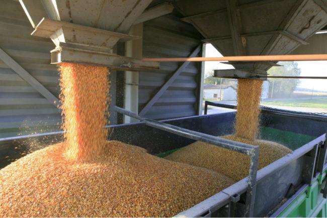 Loading grain freight bins