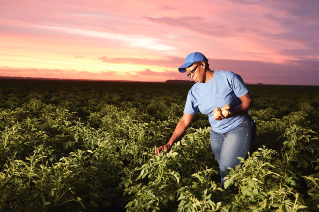 PepsiCo agriculture worker