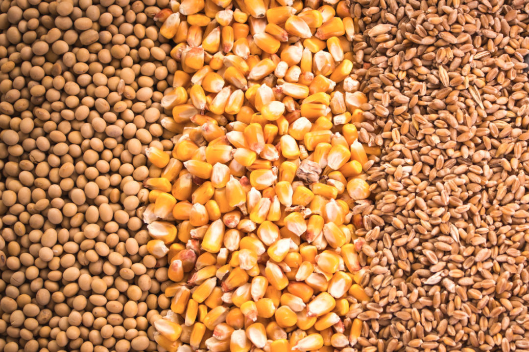 Soybeans, corn and wheat