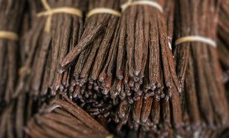 Vanillabeanbundles lead